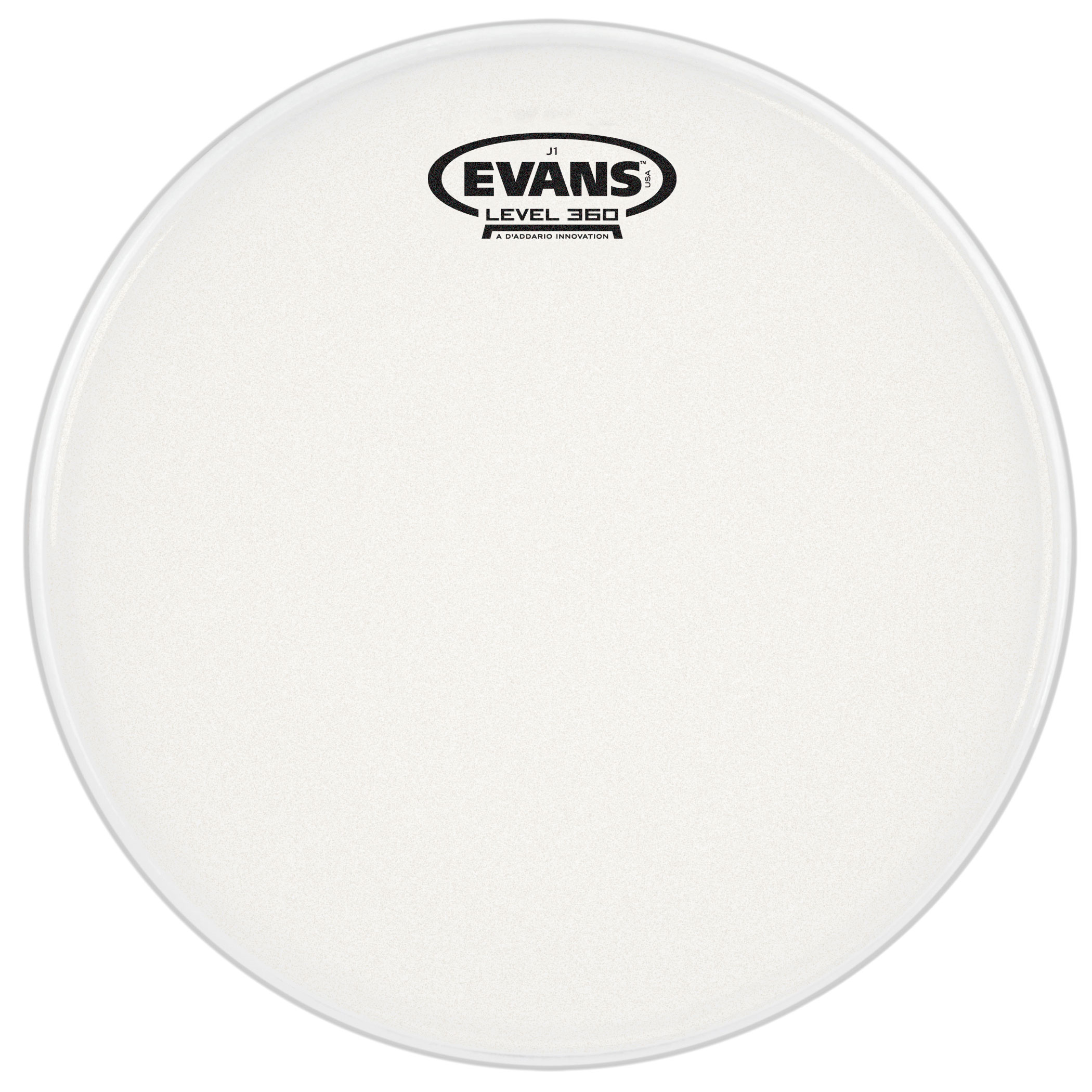 "Evans 10"" J1 Etched Head"