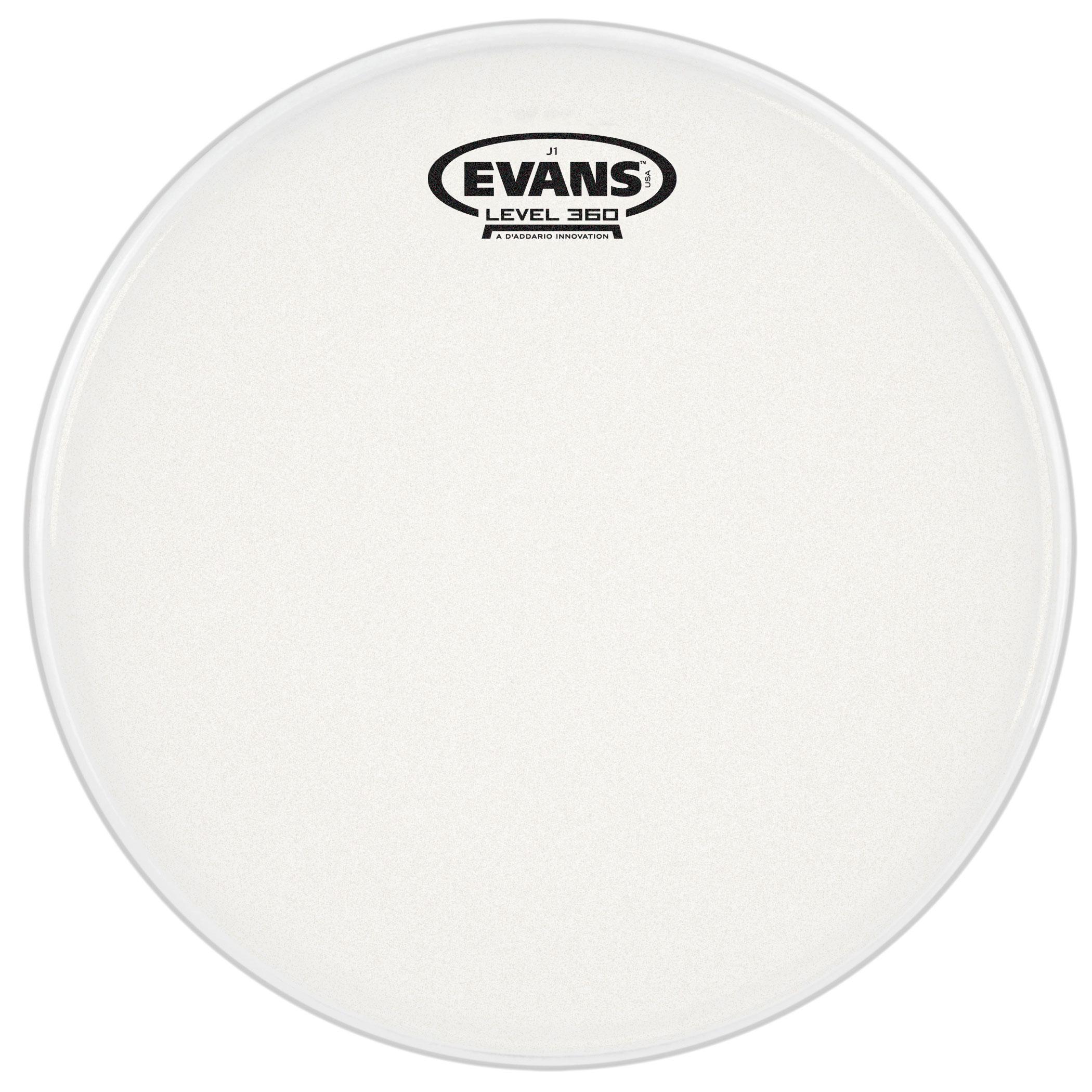 "Evans 13"" J1 Etched Head"